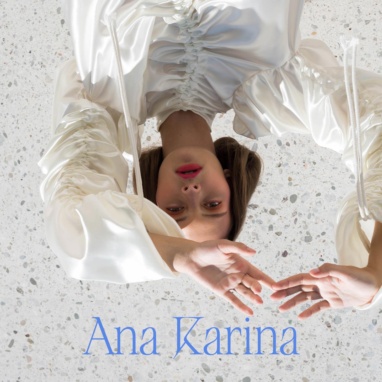 Ana Karina Brand Kit
